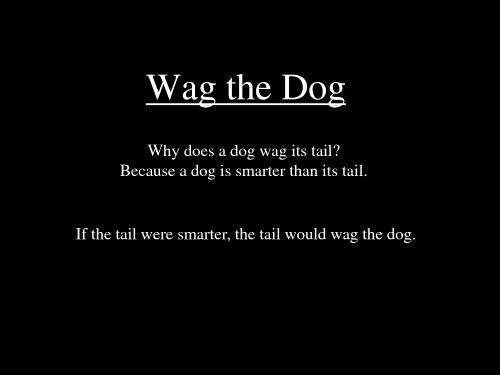 wag-the-dog-lrg